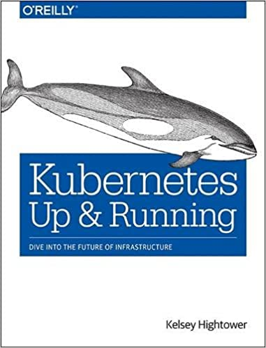 Kubernetes: Up and Running: Dive into the Future of Infrastructure 1st Edition