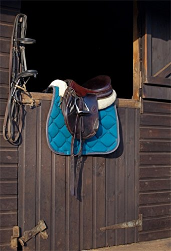 AOFOTO 5x7ft Vintage Horse Saddle Backdrop Old Bridle Lasso Photography Background Old Wooden Stable Door Retro Ranch Barn Adult Cowboy Man Woman Girl Boy Portrait Photoshoot Studio Props (Lasso Cake)