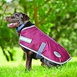 Weatherbeeta Parka 1200D Dog Coat – 16″ – Navy/grey/white