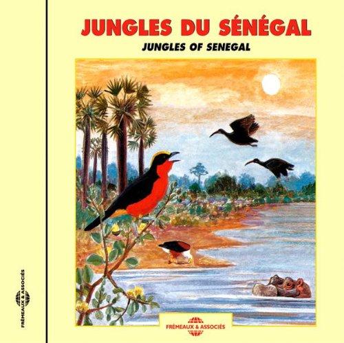 Bird Chorus Next To A Pool (Pool 5 Choruses)