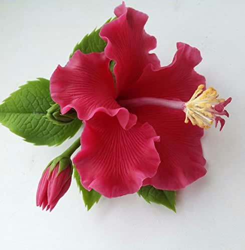 Wedding Gifts From Hawaii: Amazon.com: Hibiscus Hairclip, Hibiscus Comb, Gift For Her