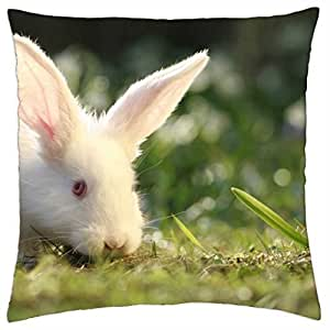 Beautiful White Rabbit - Throw Pillow Cover Case (18