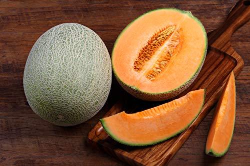 Hales Best Jumbo Cantaloupe Seeds (Cantaloupe Seeds)