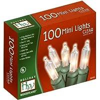 Noma /Inliten Holiday Wonderland - Juego de luces de navidad claras, 100 hilos, cable verde