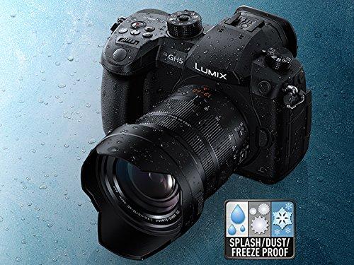 Panasonic LUMIX GH5 4K Mirrorless Camera with Lecia Vario-Elmarit 12-60mm F2.8-4.0 Lens (DC-GH5LK) 5
