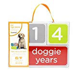 Pearhead Pet Age Blocks Perfect Photo Prop for Sharing Your Pet's Birthday Photos, Create Keepsakes with your Dog or Cat