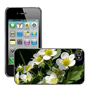 Print Motif Coque de protection Case Cover // M00238284 Planta de fresa fresa Flores // Apple iPhone 4 4S 4G