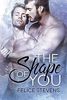The Shape of You by [Stevens, Felice]