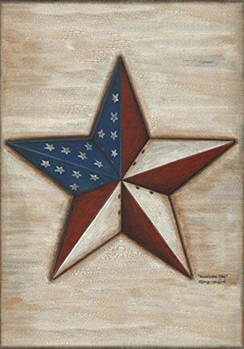 Toland Home Garden American Star 28 x 40-Inch Decorative USA-Produced House Flag
