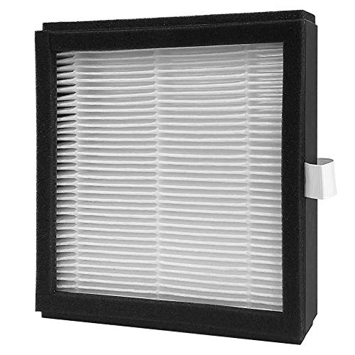 Hysure HEPA Filter 2-in-1 Dehumidifier Air Purifier