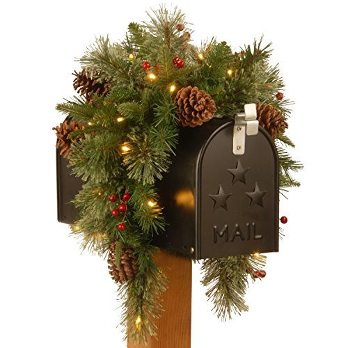 National Tree 36 Inch Feel Real Colonial Mail Box Swag with 8 Pine Cones, 8 Red Berries and 35 Warm White Battery Operated LED Lights with Timer (PECO7-395-36MB) (Garland Swag Christmas Window)
