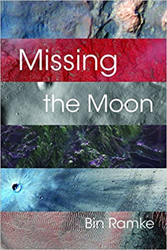 Book Missing the Moon