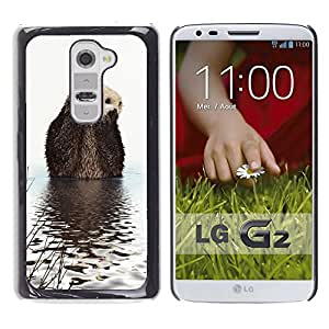Super Stella Slim PC Hard Case Cover Skin Armor Shell Protection // M00145503 Otter Animal Water Ripples Branches // LG G2 D800 D802 D802TA D803 VS980 LS980