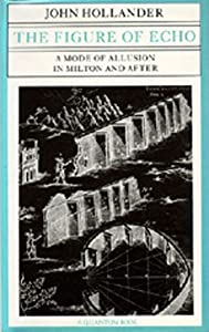 The Figure of Echo: A Mode of Allusion in Milton and After (Quantum Books)