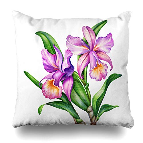 Ahawoso Throw Pillow Cover Botanic Watercolor Original Painting Pink Purple Cattleya Orchid Nature Green Tropical Design Blossom Decorative Cushion Case Square 18