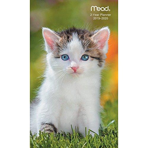 Kittens Pocket Planner 2 Year