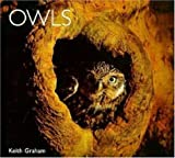 Owls, Keith Graham, 1900455234