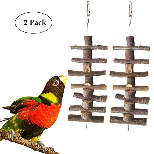 (BWOGUE Small Animal and Bird Chew Sticks,Natural Apple Branch Chew Toys Teeth Shred Clean Tool (Two Piece))