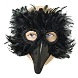 Bristol Novelty EM003 Bird Feather Eye Mask, Black, One Size
