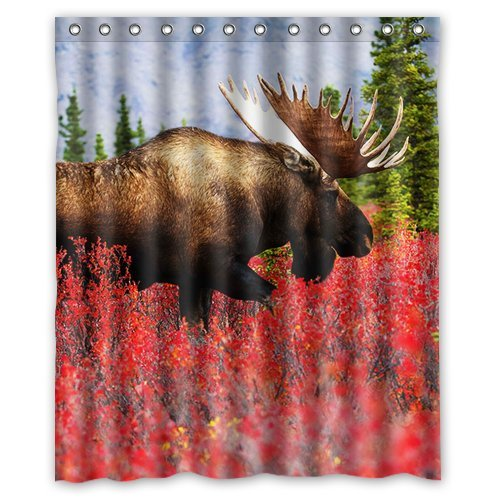 North American Moose Background Waterproof Shower Curtain/Bath Curtain--Size: 60 x 72