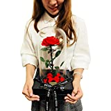 DeFaith Beauty and the Beast Rose, 13'' x 6.7'' Preserved Real Fresh Rose with Fallen Petals in Glass Dome, Special Valentines Day and Anniversary Gift for Her (13'' Beauty and The Beast Rose - Red)