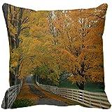 Home Decorative Square Custom Throw Pillow Cover Elegant Theme Nature Elegant Theme Nature 18 X 18Inches Cotton Comfortable Throw Pillowcase