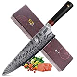 """Tuo Cutlery Damascus Chef's knife 9.5""""-Japanese 45 layers AUS-10 Damascus Steel with Case-Ring-D"""