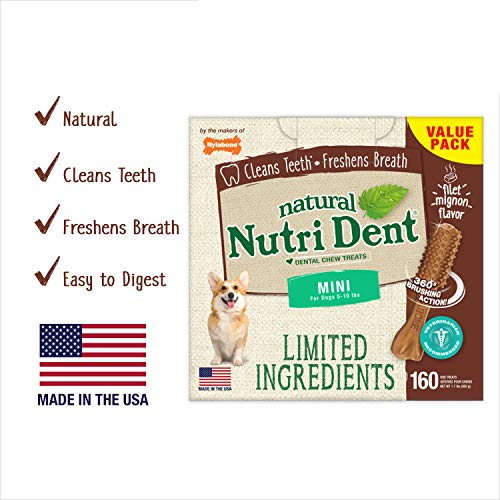 Nylabone Nutri Dent Filet Mignon 160Count Box