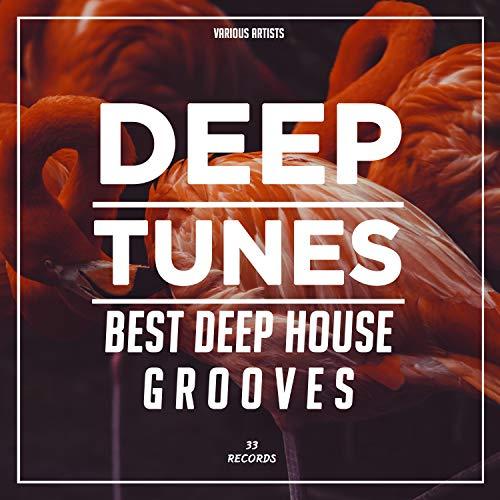 Deep Tunes (Best Deep House Grooves)