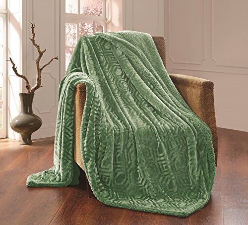 All American Collection Solid Plush Throw Blanket Sherpa/Borrego Backing Queen/King Size (Sage Green)
