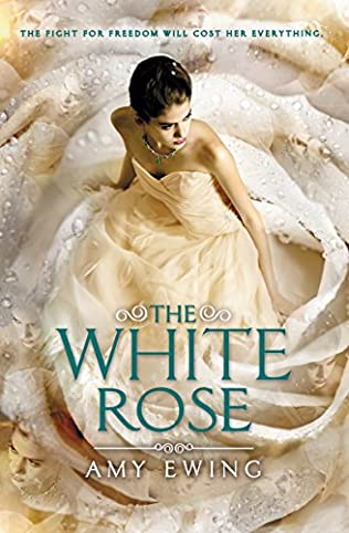book cover of The White Rose