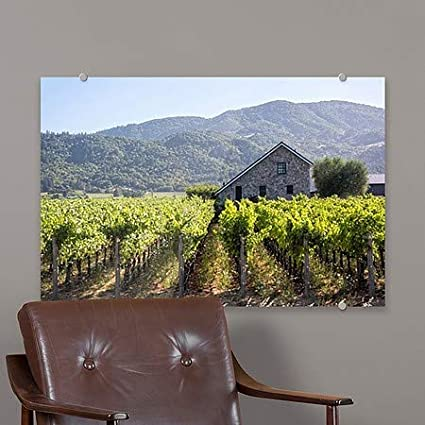 Circle CaptureNapa Valley Vineyard Premium Acrylic Sign 5-Pack CGSignLab | 18x12