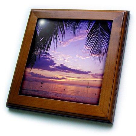 3dRose ft_72733_1 Sunset on The Beach, Negril, Jamaica, Caribbean-CA22 GJO0020 Greg Johnston Framed Tile, 8 by 8-Inch - Ceramic Palm Tree