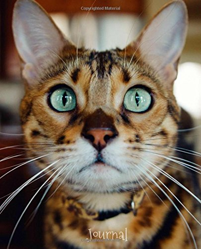 Journal: Bengal Cat (Cat Journals Collection)