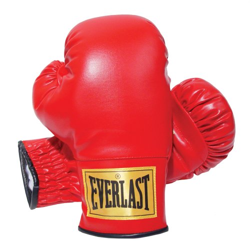 Everlast 14oz Slip-On Boxing Gloves – DiZiSports Store