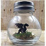 fish belli 1 Inch Black Pet Dragon with Adoption Certificate in Round Jar