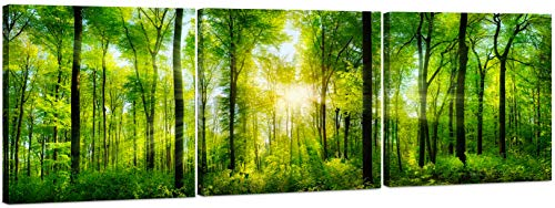 - Canvas Wall Art Decor - 24x24 3 Piece Set (Total 24x72 inch)- Magical Tree Filled Forest - Large Decorative & Modern Multi Panel Split Canvas Prints for Dining & Living Room, Kitchen, Bedroom & Office