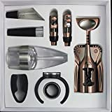 Mayshion Bronze Wine Set Gift Box 9-Piece Wine Accessory Tool Kit