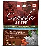 Canada Litter Katzenstreu Babypuderduft original aus Kanada   Katzenstreu Klumpstreu und natürliches Bentonit Katzenstreu