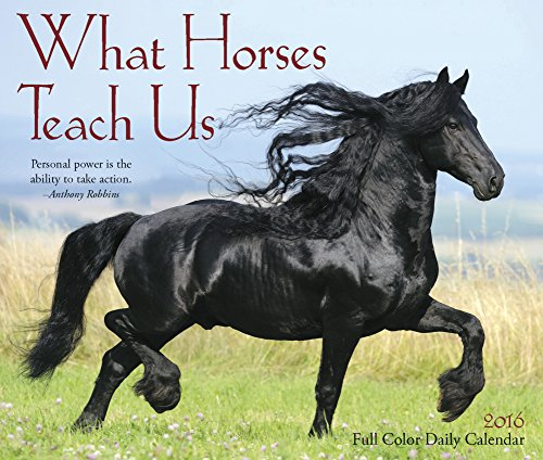 What Horses Teach Us 2016 Desk Calendar by Willow Creek Press