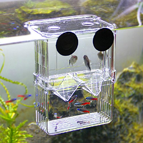 Kicode Juvenile Hatchery Box Fish Breeding Incubator Isolation Hanging Tank Breeder