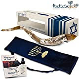 HalleluYAH Silver Plated Shofar Set: 32''-35'' Blowing Men Kudu Horn Kosher Shofar– Traditional Ancient Musical Instrument For Spiritual Ceremonies – Authentic Curved Made In Israel