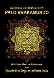 Palo Brakamundo, Carlos Alberto Rojas Calderón, 1463314604