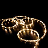 WYZworks 10', 20', 25', 50', 100', 150', 300' ft (300' feet) Warm White LED Rope Lights 2 Wire Accent Holiday Christmas Party Decoration Lighting | UL & CSA Certified