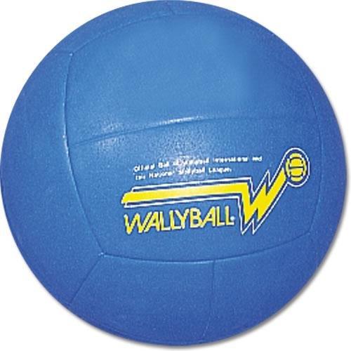 BSN Official Wallyball Ball by BSN