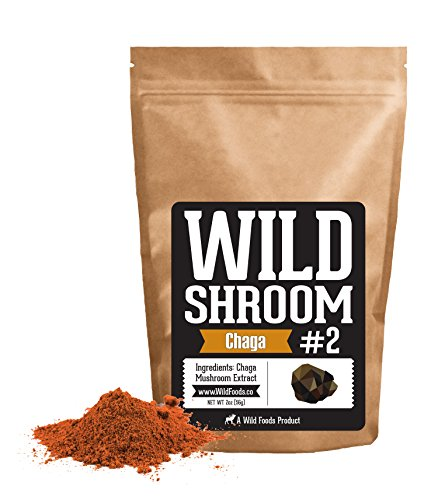 Chaga Mushroom Extract by Wild Foods – 10:1 Water-Extraction of Fruiting Body Only 5116 fOgVrL  Home Page 5116 fOgVrL