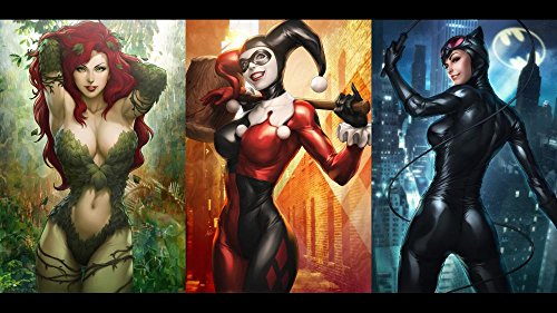 Poison Ivy Catwoman - Twenty-three Dc Comics Catwoman Harley Quinn Poison Ivy (24X36 Inch) Silk Poster Home Decor