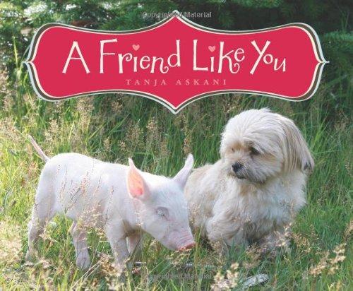 A Friend Like You pdf
