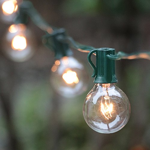 Outdoor Accent Light Bulbs in Florida - 4
