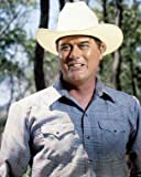 DALLAS LARRY HAGMAN 24X36 POSTER PRINT
